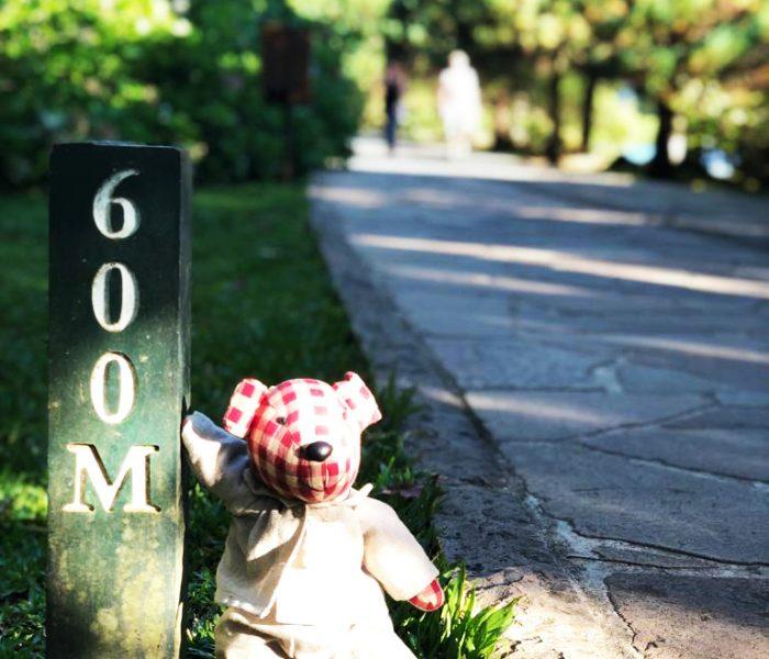 trilha-caminhada-em-frente-ao-hotel-no-lago-negro
